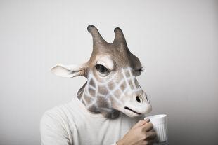"""Kotrschal_giraffe_mensch - <strong>Biologicum Almtal</strong><br /> """"Ein frischer Blick auf die Evolution"""" prägte dieses Jahr die Veranstaltung im oberösterreichischen Grünau. Heuer wurde erstmals auch ein """"Junior Biologicum"""" für ein junges Publikum angeboten. - © iStock / kohei_hara"""