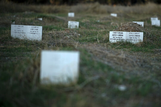Friedhof Lesbos - © Foto: Getty Images / Christopher Furlong