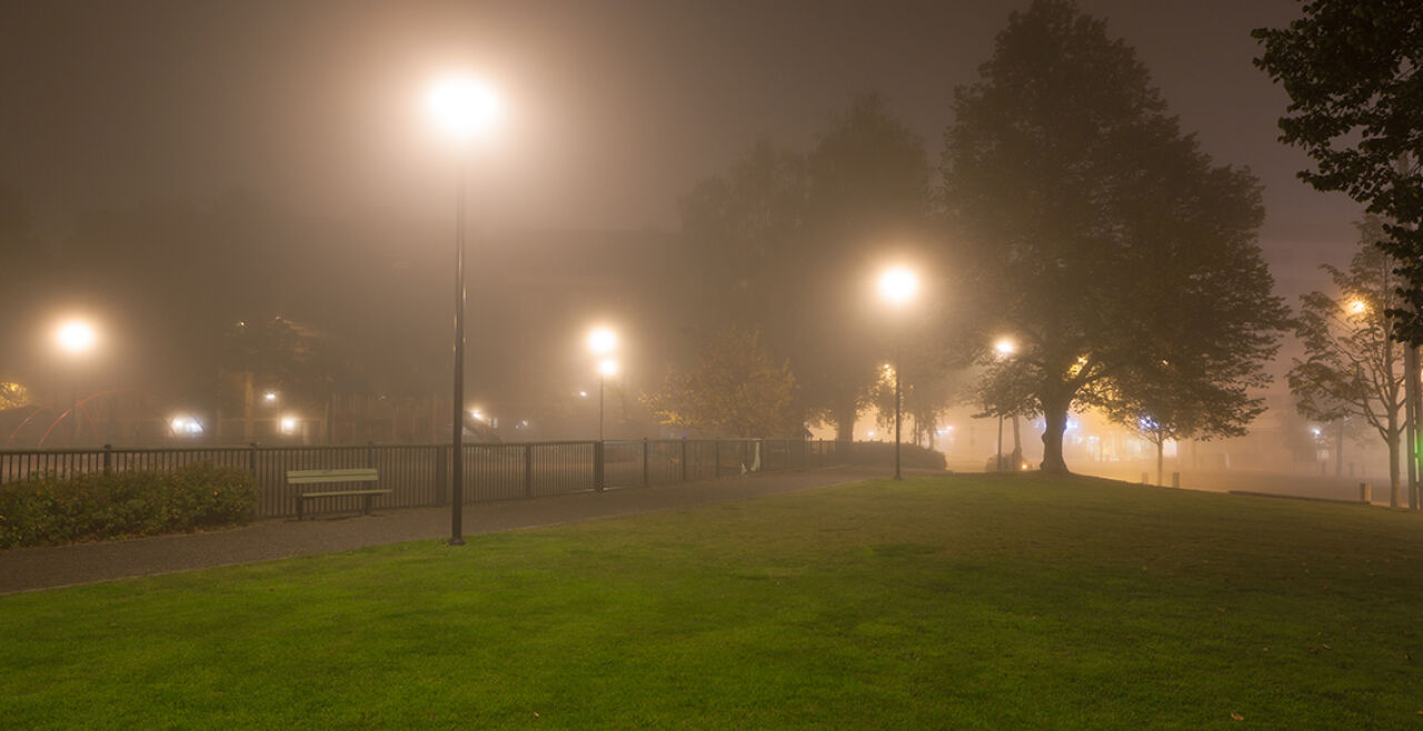 Park bei Nacht - © Foto: iStock / Juhku
