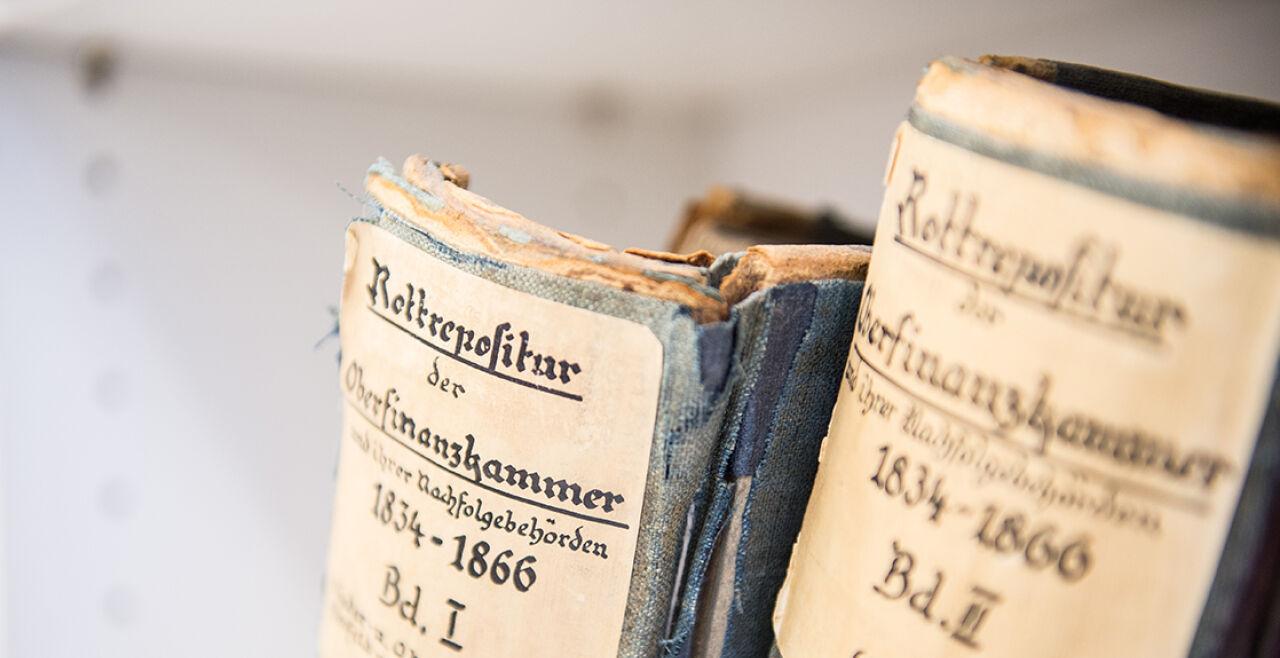 Genealogie - © Fotos: Luiza Puiu