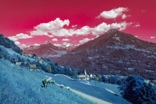 """Omnipräsente Heimat - Heimat kann bezogen sein auf eine unveränderbare Herkunft. Es gibt sie aber auch im Sinne von diversen """"Compartments"""" unseres Lebens. - © iStock / Kemter (Farbmanipulation: Rainer Messerklinger)"""