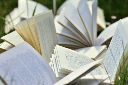 Bücher - © Foto: congerdesign / Pixabay