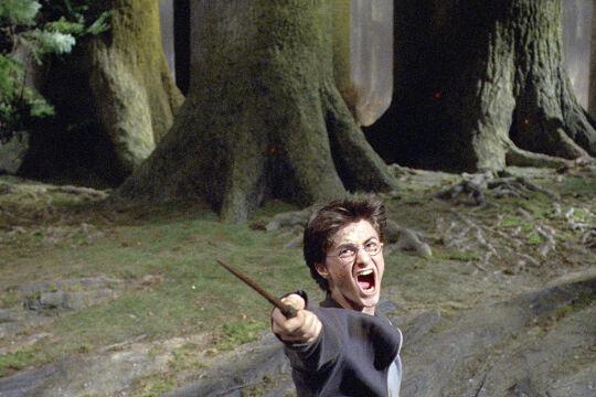 """Harry Potter - Wie der Zugang zu inneren """"Stärke- Anteilen"""" gelingen kann, lässt sich anhand der Abenteuer von Harry Potter exemplarisch nachvollziehen. - © picturedesk.com / Ronald Grant / Mary Evans"""