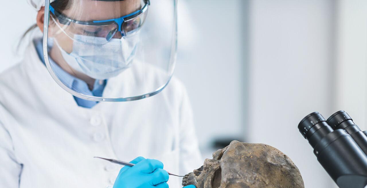 Alte Knochen - © Foto: iStock/microgen