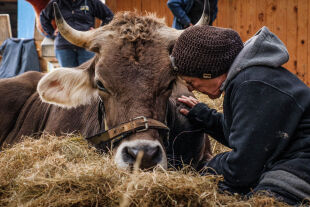 Butenland Film - © Foto: Polyfilm