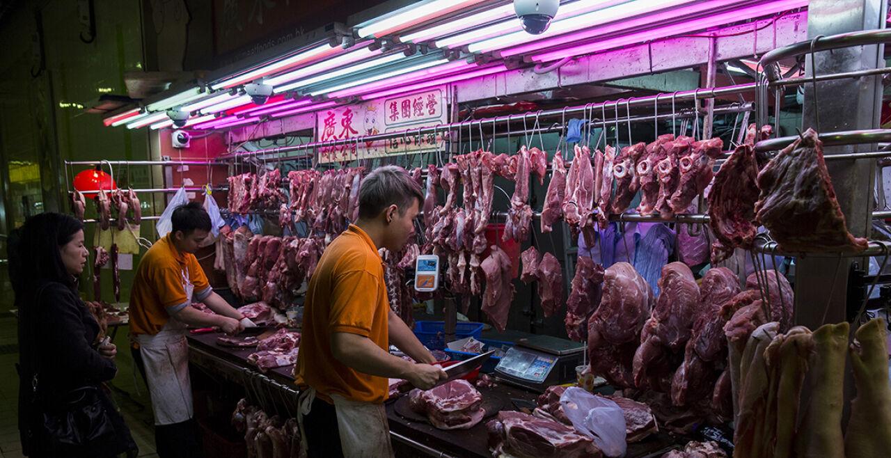 """Nasse Märkte - Marktplätze, wo lebende oder unmittelbar geschlachtete Tiere angeboten werden, gelten als """"Zeitbombe"""" für neuartige Infektionskrankheiten (Bild: """"Wet Market"""" in Hong Kong). - © Foto: APA / AFP / Isaac Lawrence"""