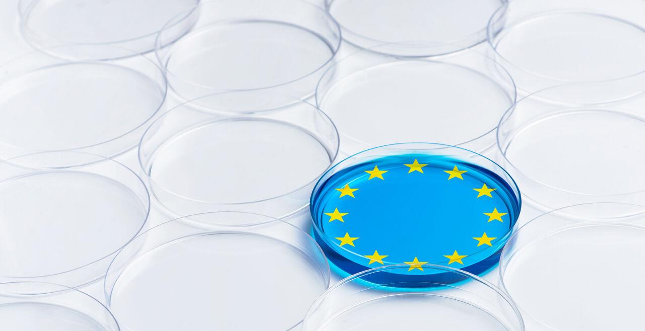 EU Dish - © Fotomontage Rainer Messerklinger (unter Verwendung eines Bildes von  iStock/Pogonici)