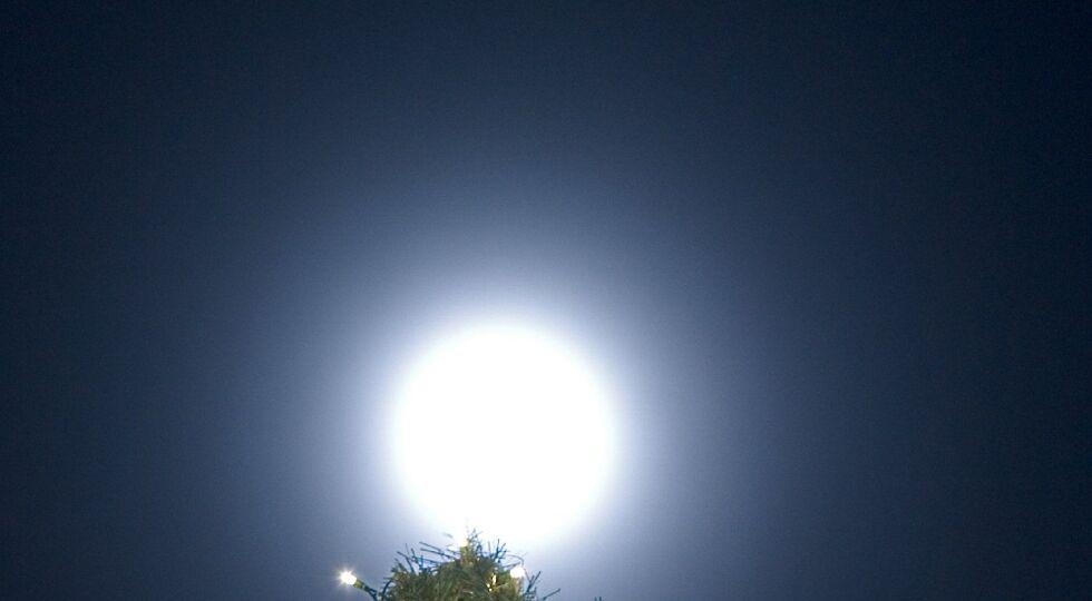 Weihnachten - Beleuchteter Christbaum. - © APA/ Friso Gentsch