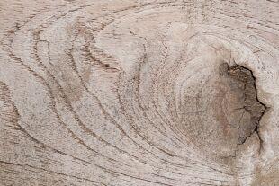 Holz-Struktur - © Pexels / FWStudio