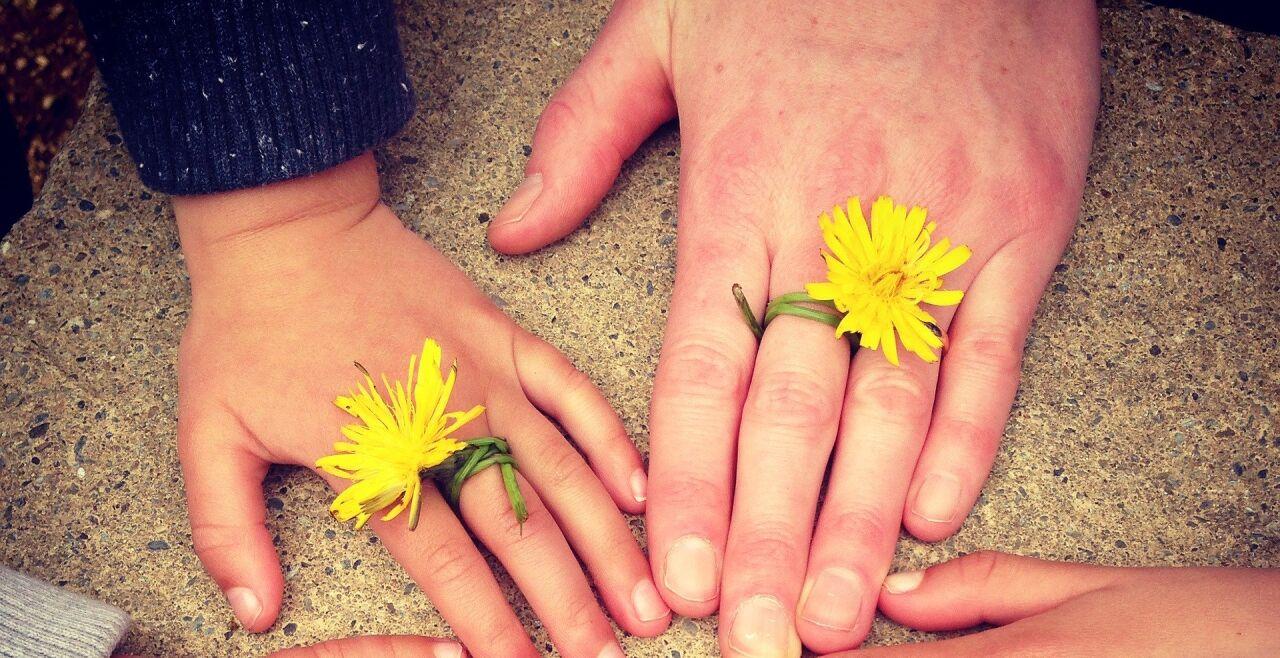 Familie - Familie, Hände, Blumen, Generationen - © Pixabay / Hari Mohan