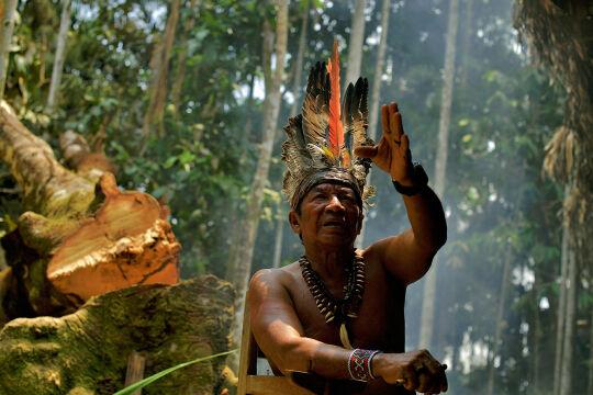 Amazonien - Marcellino Apurina, indigener Führer in Westamazonien, einer Region, die besonders von der Rodung betroffen ist. - © APA AFP Carl de Souza