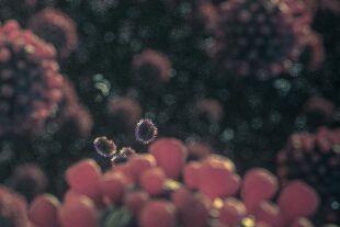 Corona_33 - © Foto: iStock/4X-image
