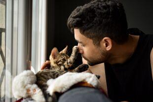 Kuschelrituale mit Katze  - © Foto: iStock / Raphael Angeli