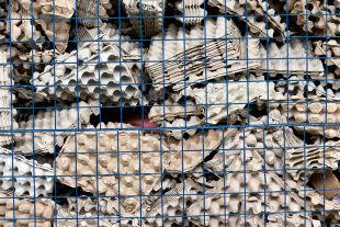 Gelbe vom Ei - <strong>Massenware aus Dotter und Klar</strong><br /> Zwei Milliarden Eier werden jedes Jahr in Österreich verspeist. Viele davon kommen von den derzeit 6,8 Millionen hiesigen Legehennen, doch gerade verarbeitete Eier stammen nicht selten aus ausländischer Käfighaltung. - © Getty Images / Sergei Malgavko / TASS