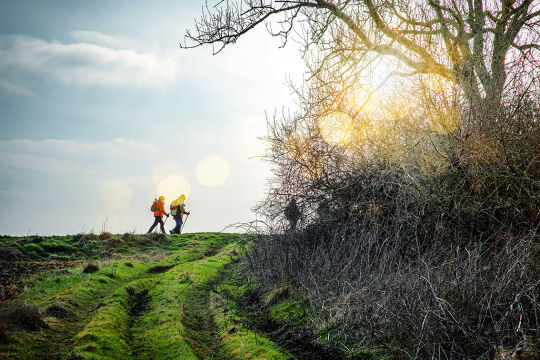 Bewegung - © Foto: iStock/ debove sophie