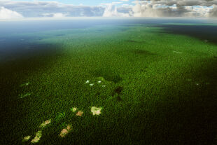 Amazonas - © Foto: iStock/Vonkara1