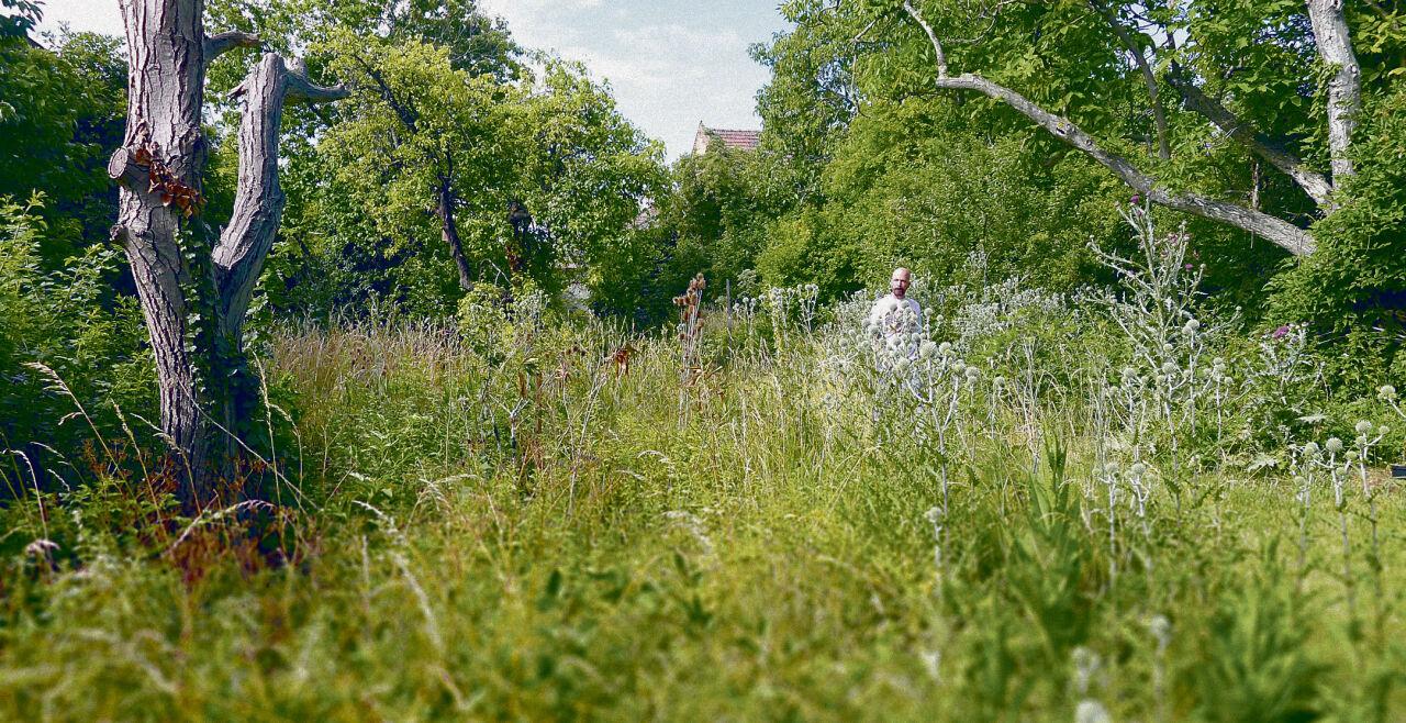 """""""Gartenstudio"""" - Paul Neuninger in seinem """"Gartenstudio"""" südlich von Wien: Der Mensch zieht sich als Akteur zurück bzw. versteht sich nur noch als ein Akteur unter vielen."""