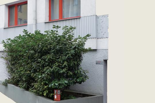 Seite 5 - © Foto: Rainer Messerklinger