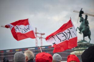 Corona-Demonstranten - © Foto: picturedesk.com / Hans Ringhofer
