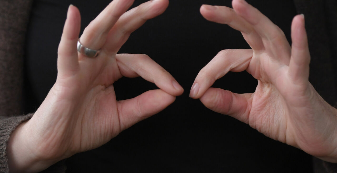 gebärensprache - © dpa / Arne Dedert