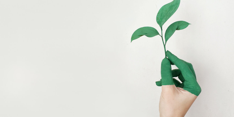 Nachhaltigkeit - © Alena Koval / Pexels