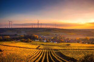 Windräder Feld - © Pixabay