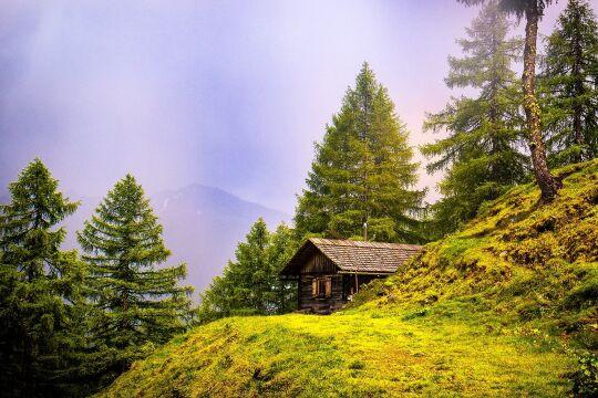 Nationalfeiertag Österreich - © Foto: Pixabay