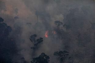Narval Klima - <strong>Apokalypse Klima</strong><br /> Die Klimakrise und mit ihr ein mögliches Szenario der aussterbenden Menschheit wird immer bedrohlicher.<br /> Wie können wir uns mit den Tatsachen auseinandersetzen, ohne in Panik zu verfallen? - © Getty Images / Victor Moriyama