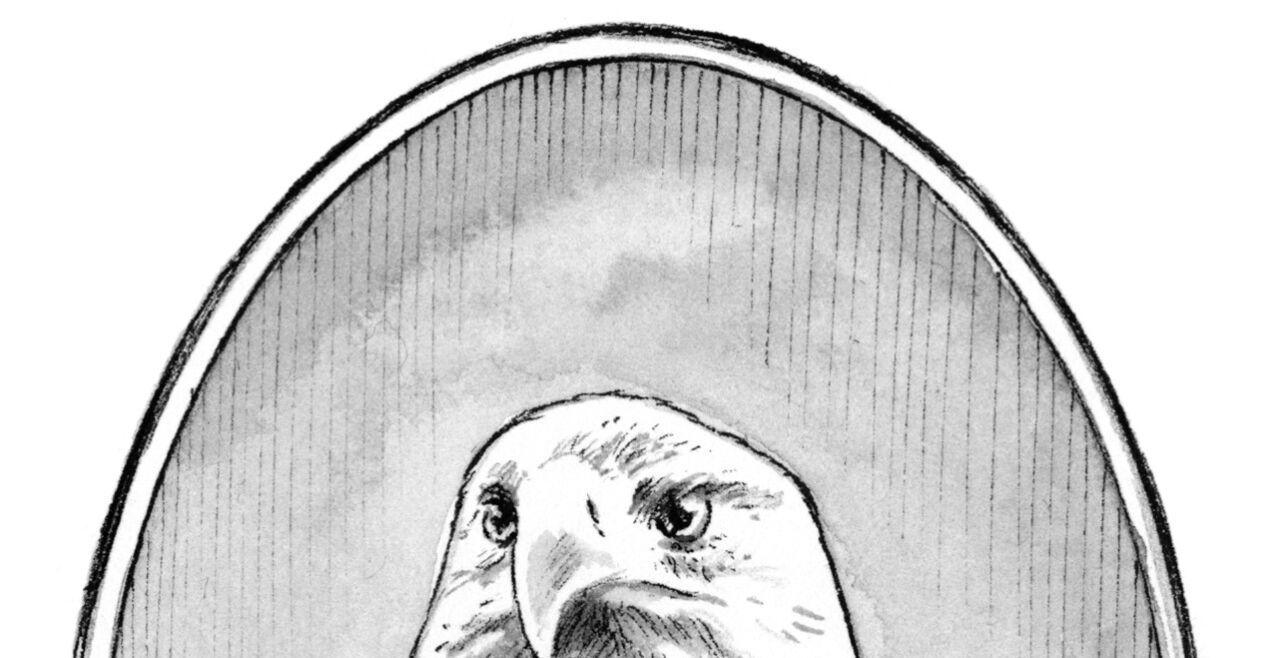 Harpyrien - Das Reich des Todes besteht im Roman aus drei Teilen, die von Tierwesen bevölkert werden: Hilde, Sparta und Harpyrien. - © Illustration: Gerstenberg / Torben Kuhlmann